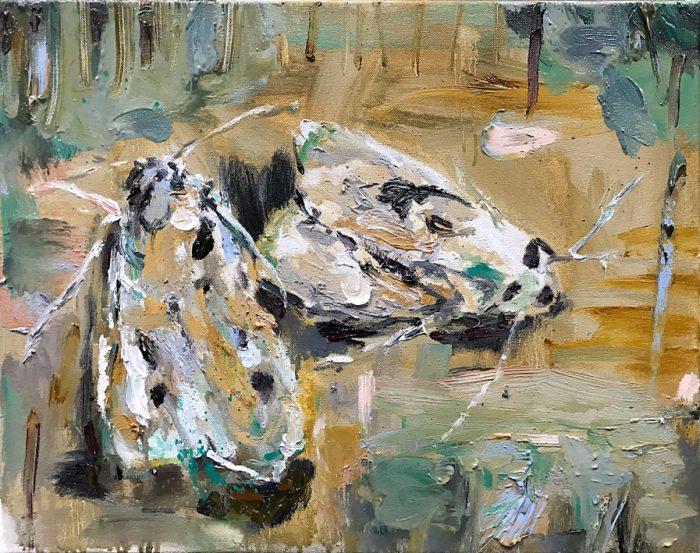 Moths, Oil on canvas, 40 x 50 cm, 2021
